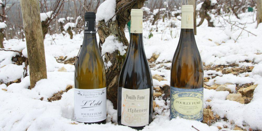 Le Domaine Carroy sera présent au salon Vin, Pain, Fromage d'Issoudun
